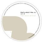 KANZYANI, Valentino/MARKANTONIO/JOY KITIKONTI - It's What I Like Vol 2 (Front Cover)