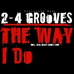 2-4 GROOVES - Like The Way I Do (Front Cover)