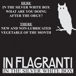IN FLAGRANTI - In The Silver White Box EP (Front Cover)