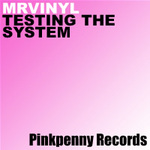 MR VINYL - Testing The System (Front Cover)