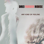 DREI FARBEN HOUSE - Any Kind Of Feeling (Front Cover)
