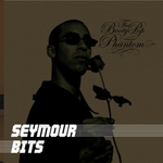 BITS, Seymour - The Booty Pop Phantom (Front Cover)