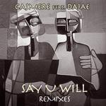 Say U Will (remixes)