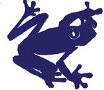Frogs 05