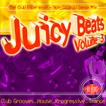 VARIOUS - Juicy Beats: Volume 3 (Front Cover)