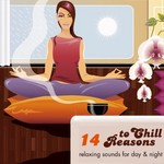 14 Reasons To Chill Vol 1