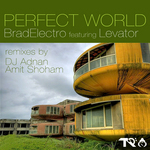 BRADELECTRO feat LEVATOR - Perfect World (Front Cover)
