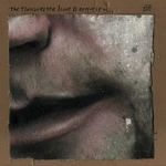 TIMEWRITER, The - Love Is Beautiful (Front Cover)
