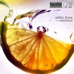 ATTIC TREE - Reminisce (Front Cover)