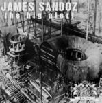 SANDOZ, James/MR BRAIDY - Big Alert (Front Cover)