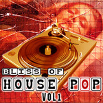 VARIOUS - Bliss Of House Pop (Front Cover)