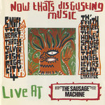 VARIOUS - Now That's Disgusting Music (Front Cover)