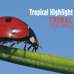 TROPICAL HIGHLIGHT - Tribal Feelings EP (Front Cover)