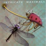 VARIOUS - Intricate Maximals (Front Cover)