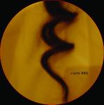 GOLDFARB, Sarah/ROEBIN DE FREITAS - DJ Is Not A Machine (Front Cover)