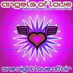One Night Love Affair (remixes)