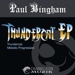 BINGHAM, Paul - Thundercat EP (Back Cover)