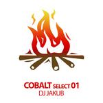 SIMEX/VADZ/BEN D/DJ JAKUB - Cobalt Select 01 (Front Cover)