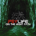 VARIOUS - On The Right Path (Front Cover)