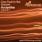 LOVE RATS, The feat SARA PETERSON - One Foot In The Groove Accapellas & Tools Vol 1 (Front Cover)