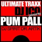 DJ ICO/DJ SPIRIT/ARTIK - Pum - Pall (Front Cover)