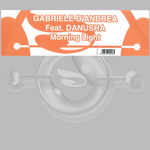 D ANDREA, Gabriele feat DANUSHA - Morning Light (Front Cover)