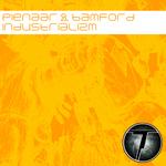PIENAAR/BAMFORD - Industrializm (Front Cover)