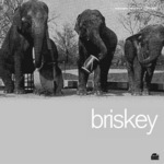 BRISKEY - Ready When You Are (Front Cover)