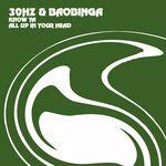 30HZ & BAOBINGA - Know Ya (Front Cover)