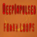 DEEPIMPULSER - Funky Loops (Front Cover)