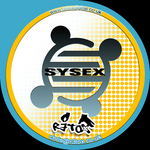 SYS-EX - Radius EP (Front Cover)