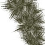 PSYTOX - Colombian Desert (Front Cover)
