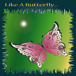 KIKUCHI, Keisho - Like A Butterfly... (Front Cover)