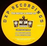 DEXPLICIT - The Niche & Bump EP (Front Cover)