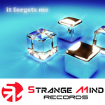 CHANEL RS - It Forgets Me (Front Cover)