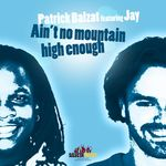 Ain't No Mountain High Enough (2008 Mixes)