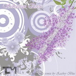 EVERS, Sebastian - A Pale Shade Of Violet (Front Cover)