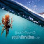 Soul Vibration #001