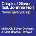 Never Give You Up (remixes)