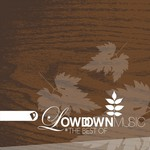 VARIOUS - The Best Of Lowdown (Front Cover)