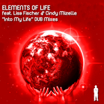 Into My Life (dub mixes)