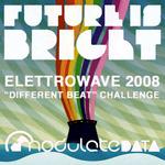 Elettrowave 2008 Challenge EP