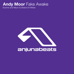 MOOR, Andy - Fake Awake (The Blizzard remix) (Front Cover)
