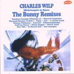 Michelangelo In Space (The Bunny Remixes)