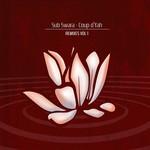 SUB SWARA - Coup d'Yah (remixes Vol 1) (Front Cover)