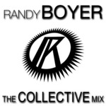 VARIOUS - The Collective Mix (Front Cover)