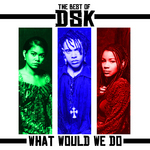 The Best Of DSK: What Would We Do