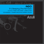 R U Sleeping (remixes)