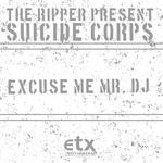 Excuse Me Mr DJ