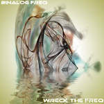 Wreck The Freq